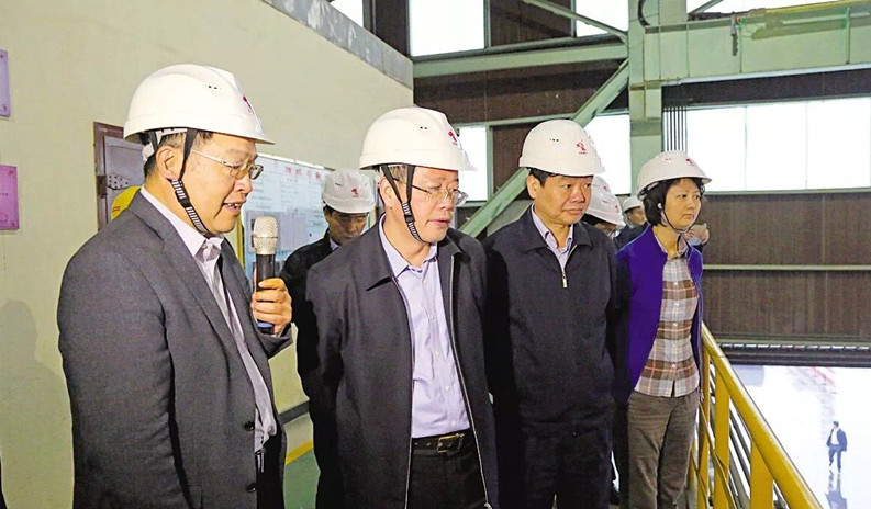 安徽省副省长杨光荣到铜陵有色金冠铜业分公司调研